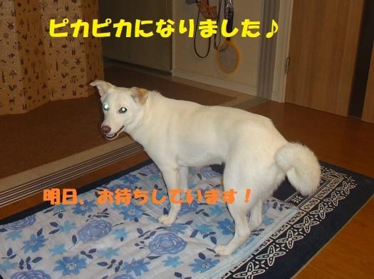 f0121712_23271048.jpg