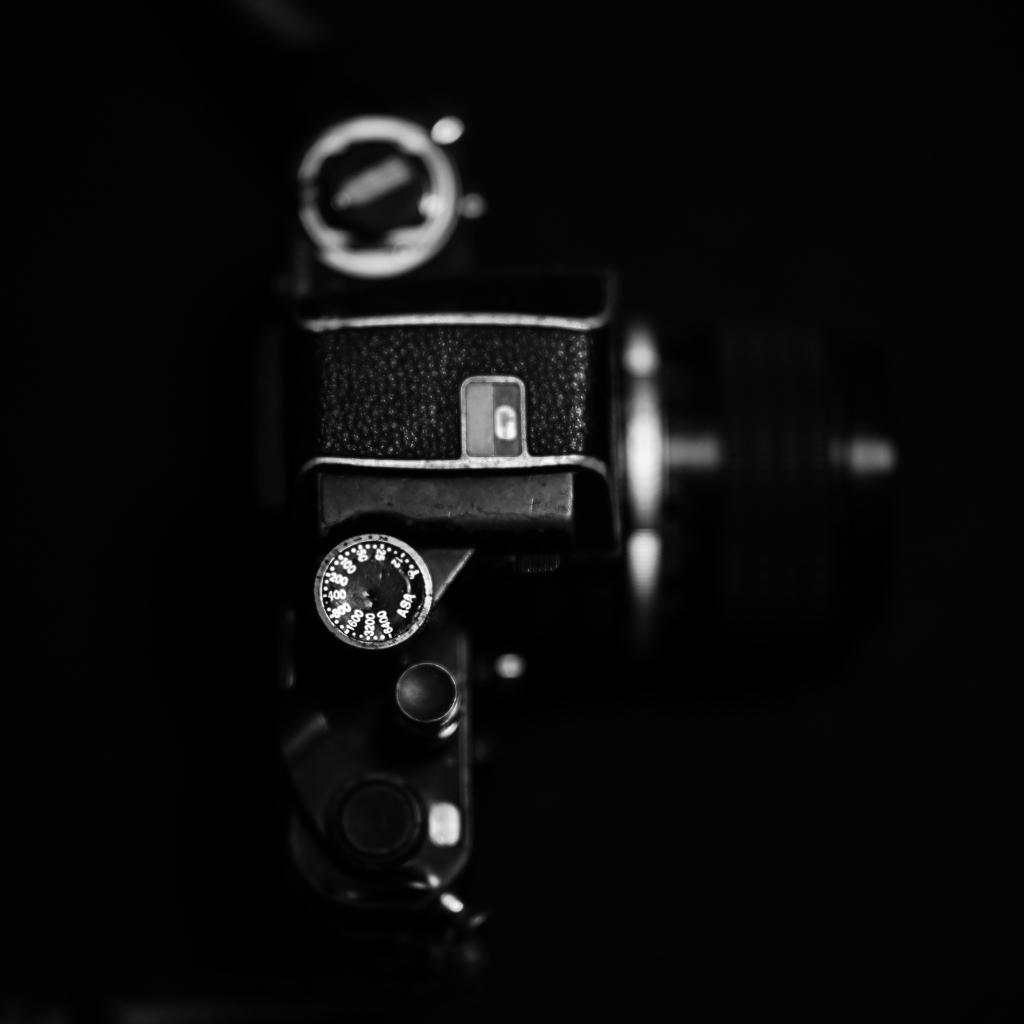 Nikon Z7  来宅_f0050534_07440003.jpg