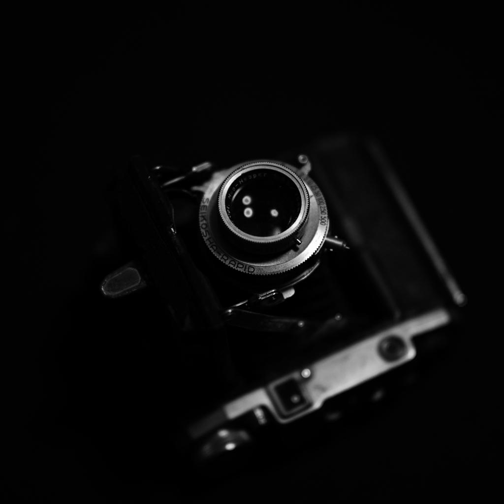 Nikon Z7  来宅_f0050534_07440035.jpg