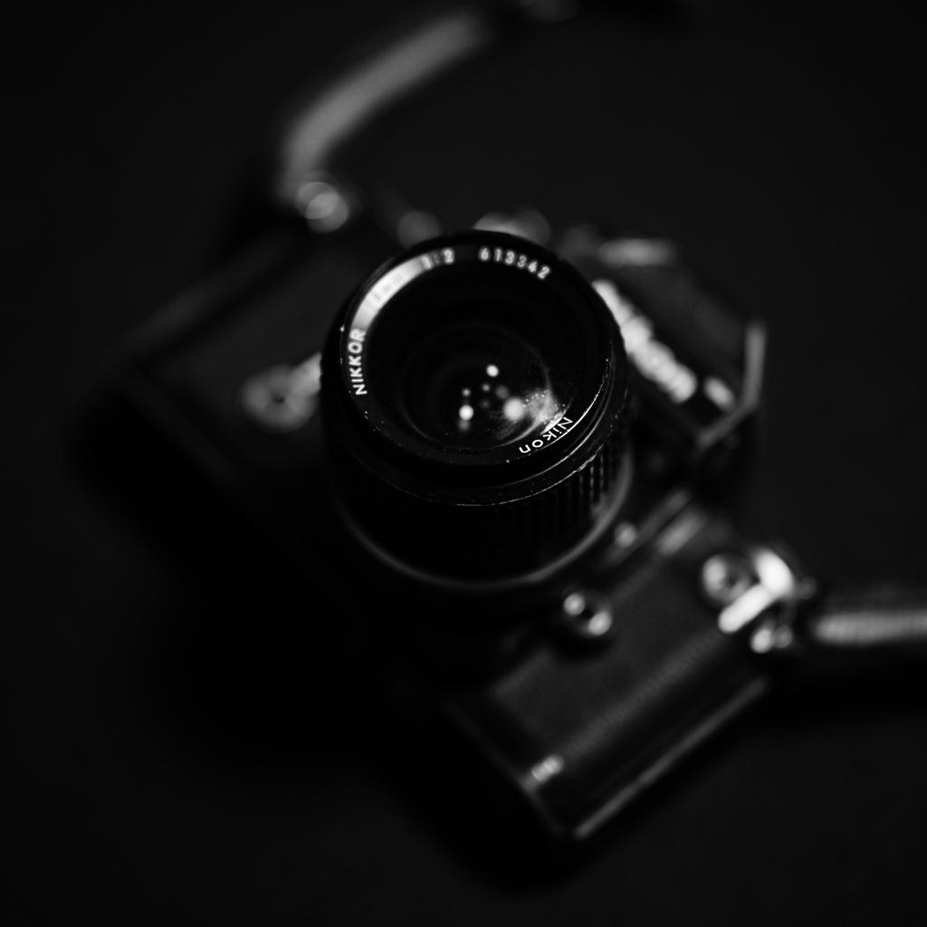 Nikon Z7  来宅_f0050534_07440060.jpg