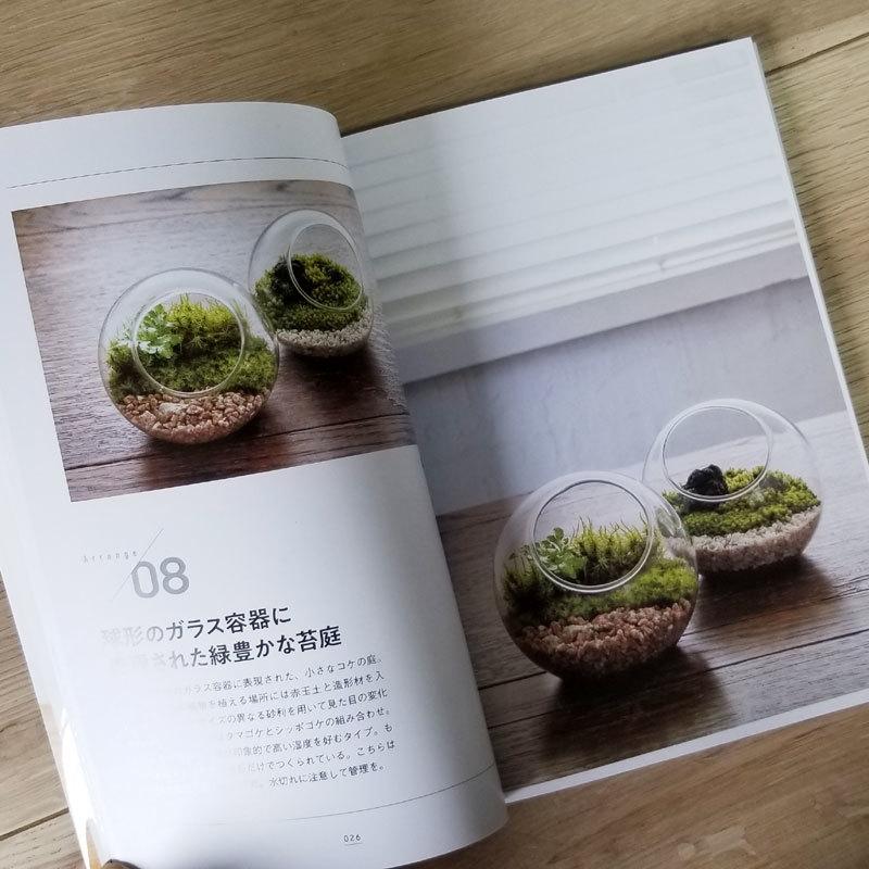 撮影協力させて頂いた書籍「コケリウム」が新発売されました。_d0376039_16345687.jpg