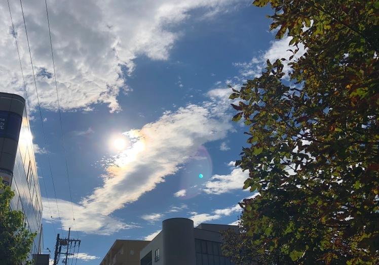 光たち。~ちっちゃな虹、朝の光、雲に映った淡い光のエネルギー~_b0298740_18584255.jpg
