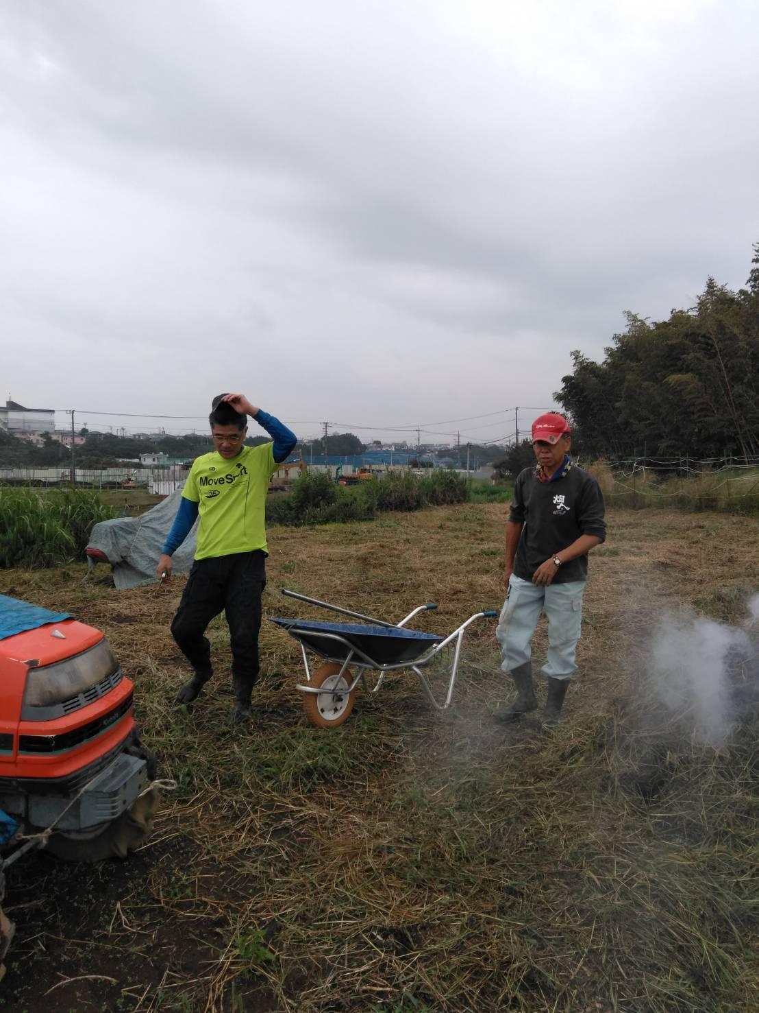 出来るだけ台風対策・・・茄子は小さくても収穫しました_c0222448_11501425.jpg