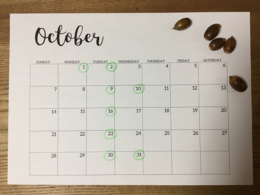 定休日のお知らせ(2018年10月)_b0246670_14532891.jpeg