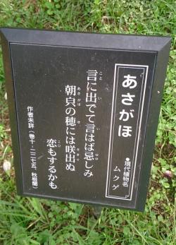 長居植物園(岡)_f0354314_17562361.png