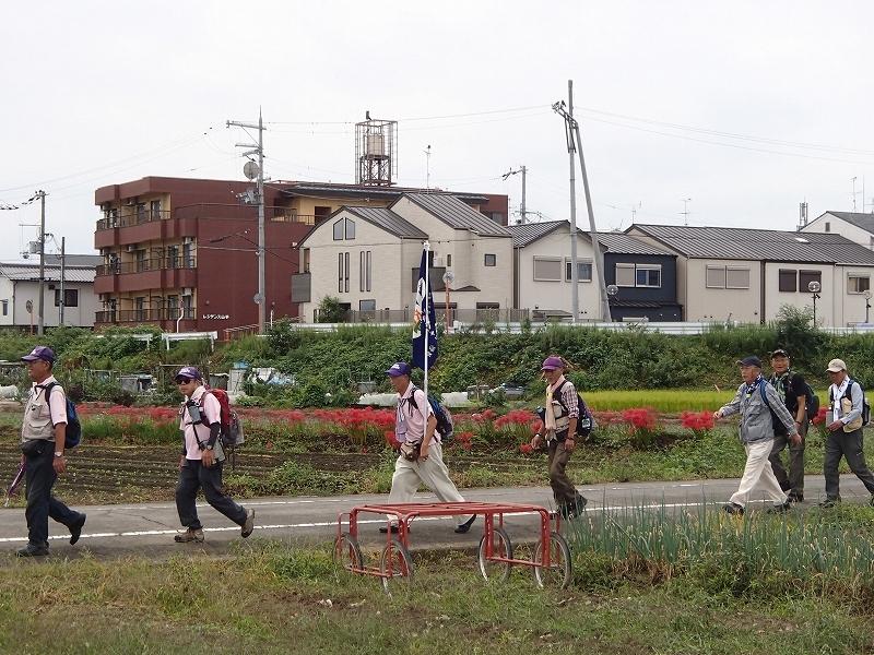 桂川東海自然歩道めぐり_b0044663_12461765.jpg