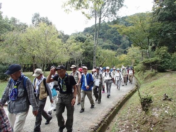 桂川東海自然歩道めぐり_b0044663_12501051.jpg