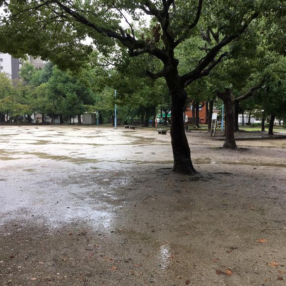 Rain Park._b0107163_10474302.jpg