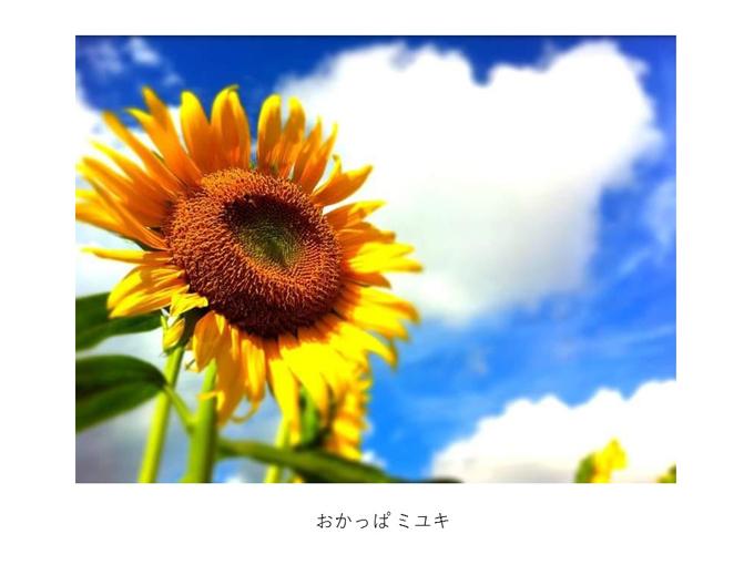 インスタ映えする写真術!第一回写真コンテスト結果発表!_e0171573_11322467.jpg