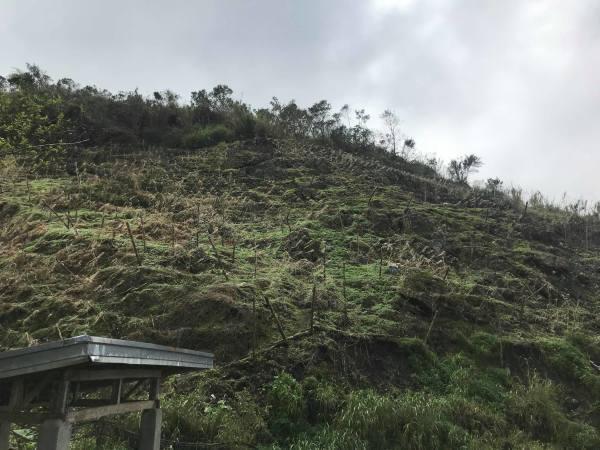 台風22号被害視察 in サグボ村_b0128901_14425066.jpg