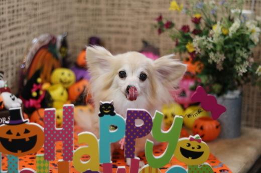 9月30日ご来店のお客様です!!_b0130018_20544404.jpg