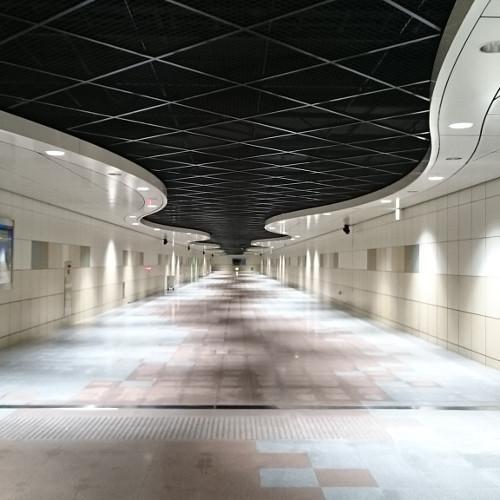 札幌パン合宿 3_d0165723_11183993.jpg