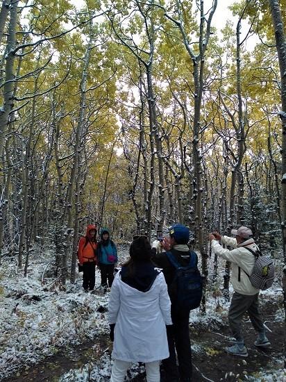 雪の黄葉 満喫ハイキング_d0112928_01501395.jpg