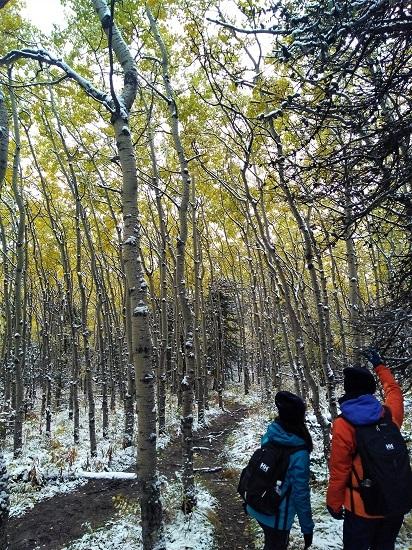雪の黄葉 満喫ハイキング_d0112928_01505709.jpg