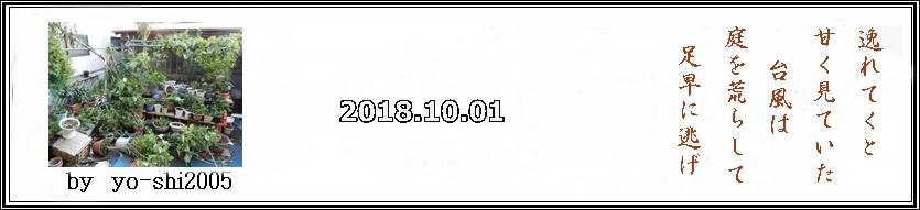 e0033229_16594418.jpg