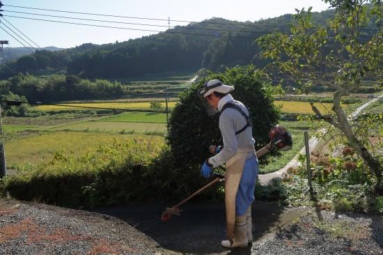 草刈り日和_d0336530_20414310.jpg
