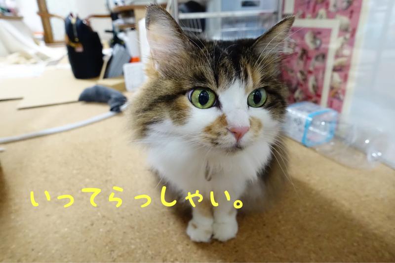 c0181639_00192988.jpg