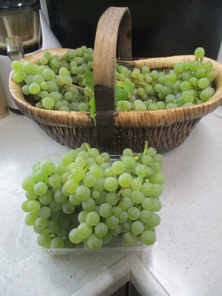 葡萄の収穫&トマトソース作り_a0279743_10321181.jpg