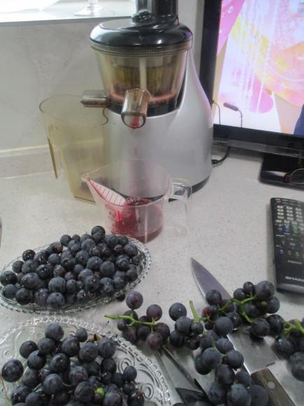 葡萄の収穫&トマトソース作り_a0279743_10363759.jpg