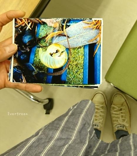 8/21(火)  夏やすみ日記【6】    ~ みかんトリミング*写真教室*のんの想い出 ~_d0362666_18100203.jpg