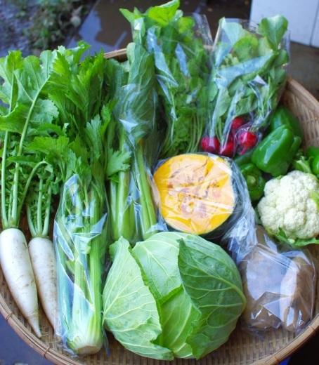 今週の野菜セット(10/2~10/6着)/台風24号_c0110869_13365089.jpg