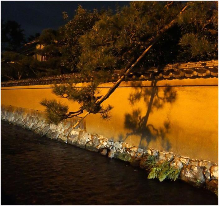 < 夜景・上賀茂神社界隈 >_c0036080_18390900.jpg