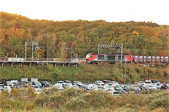 藤田八束の鉄道写真@貨物列車を追いかけて写真を撮りました・・・貨物列車を激写_d0181492_22181530.jpg