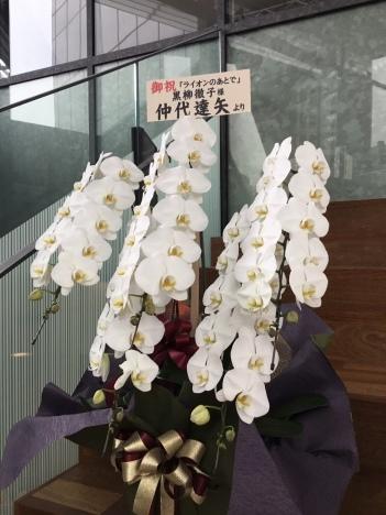 EXシアター六本木に5本立ち胡蝶蘭をお届け_d0029716_15440216.jpeg