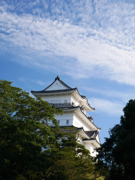 石垣山から早川漁港_a0351368_22365754.jpg