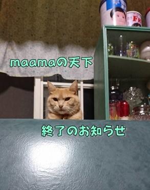 b0151748_11294943.jpg