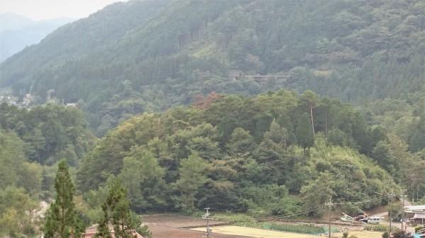 ☆今年も「宮島神社祭」が執り行われます☆_e0020051_14364156.jpg