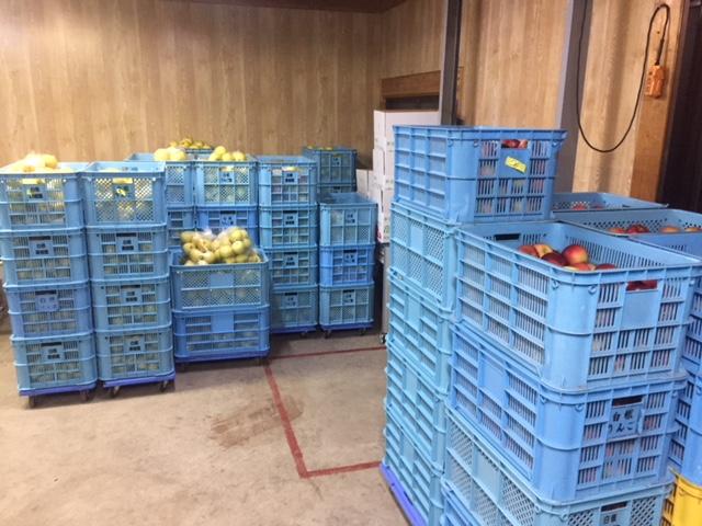 収穫!_d0139362_793219.jpg