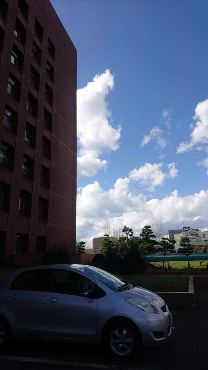 函館市役所_b0106766_2150754.jpg