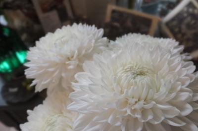 オークリーフ(秋の菊)_f0049672_13042529.jpg