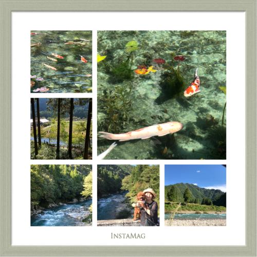 チョコ散歩・・・名もなき池へ_e0159185_08351493.jpeg