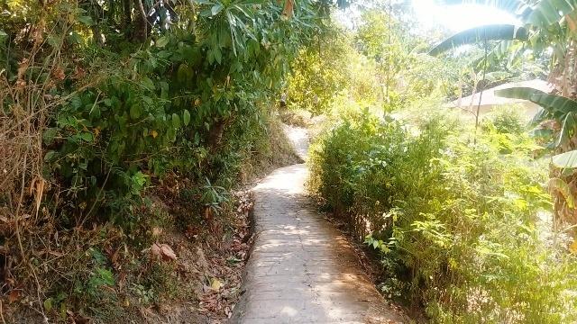 バリ島の田舎の生活(その1;好きな光景)_d0083068_12490703.jpg