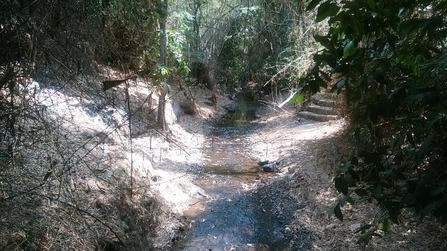 バリ島の田舎の生活(その1;好きな光景)_d0083068_12514861.jpg