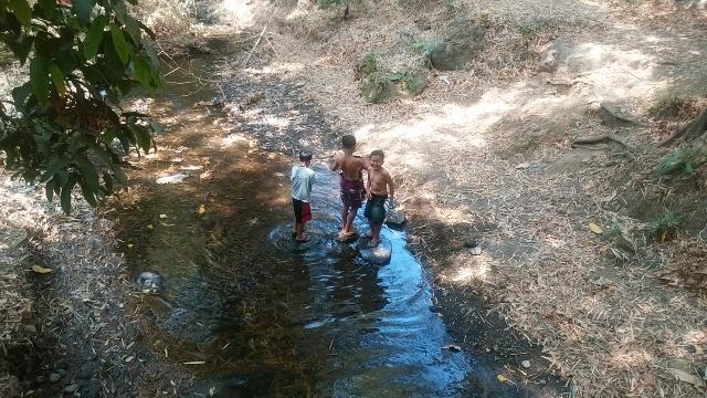 バリ島の田舎の生活(その1;好きな光景)_d0083068_13182535.jpg