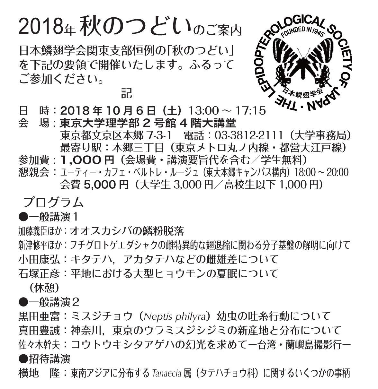 キタテハ♂雄の前脚撮影成功と秋の講演予定_a0146869_06430767.jpg