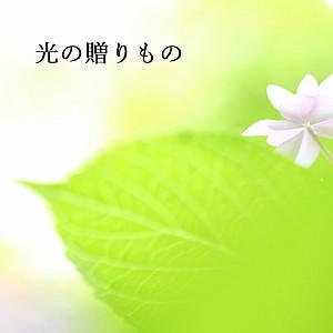 f0131611_09595108.jpg