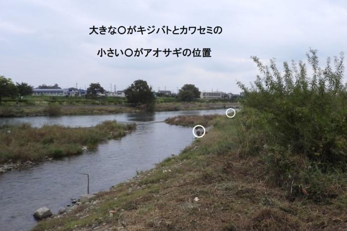 f0133213_18535600.jpg