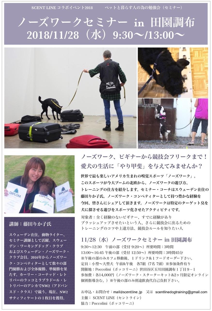 11/28(水)ノーズワークセミナー開催のお知らせ_c0099133_20141338.jpg