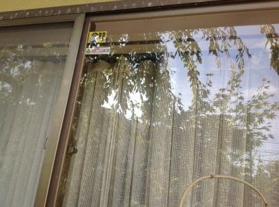 ガラス修理と防犯_c0186441_17120397.jpg