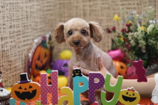 10月6日ご来店のお客様です!!_b0130018_07104011.jpg