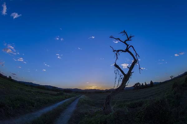 「阿武隈物語・・・朽ちてもなお」朝陽を抱いた_e0271864_20351520.jpg