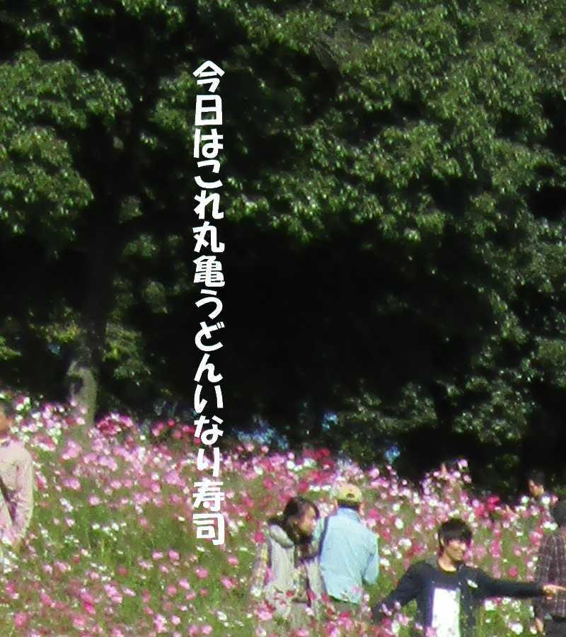 f0117041_06002648.jpg