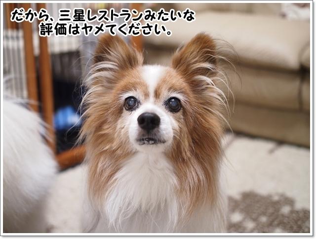 d0013149_00102597.jpg