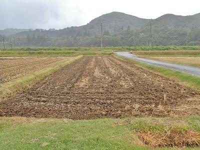 """収穫が終わって、さっそく来年の\""""土づくり\""""!_c0336902_19422346.jpg"""