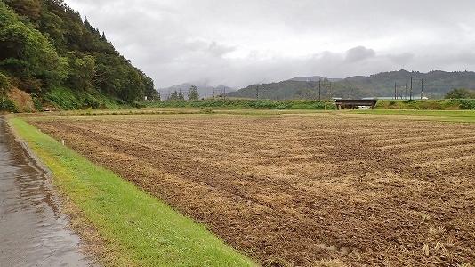 """収穫が終わって、さっそく来年の\""""土づくり\""""!_c0336902_19422715.jpg"""