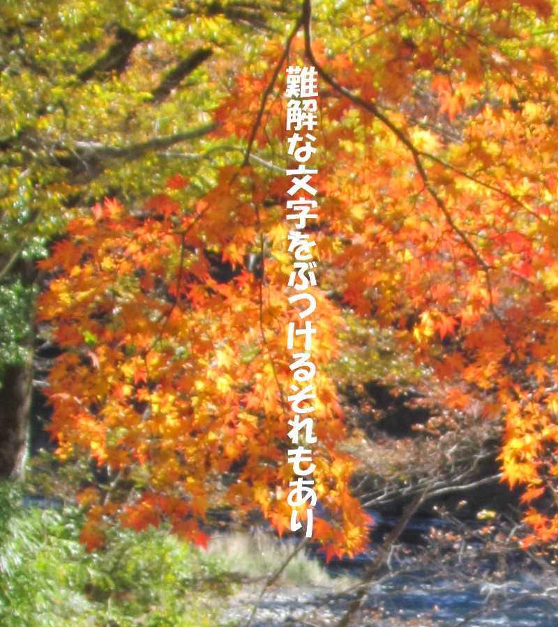 f0117041_05163257.jpg